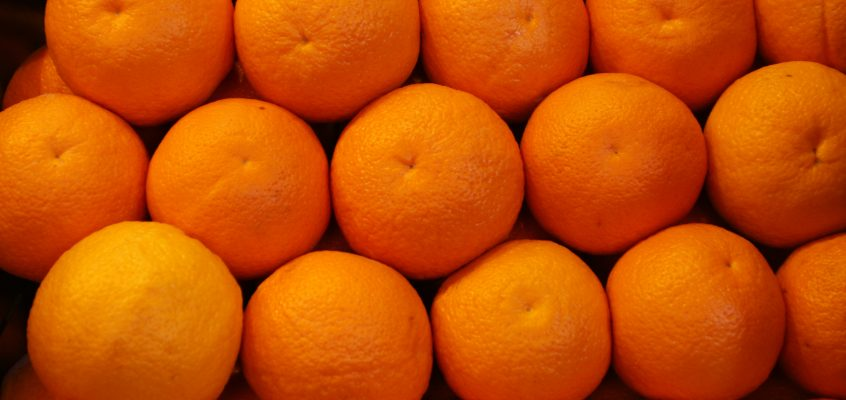 El sector citrícola español insta al Parlamento Europeo y al Gobierno que frene las nuevas concesiones a Sudáfrica que amenazan a la naranja española