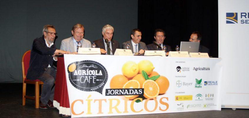Cooperatives Agro-alimentàries participará en la jornada sobre cítricos que organiza Editorial Agrícola en Valencia