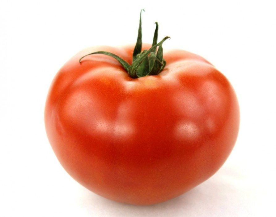 tomato04-lg