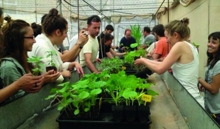 Curso Agroecologia