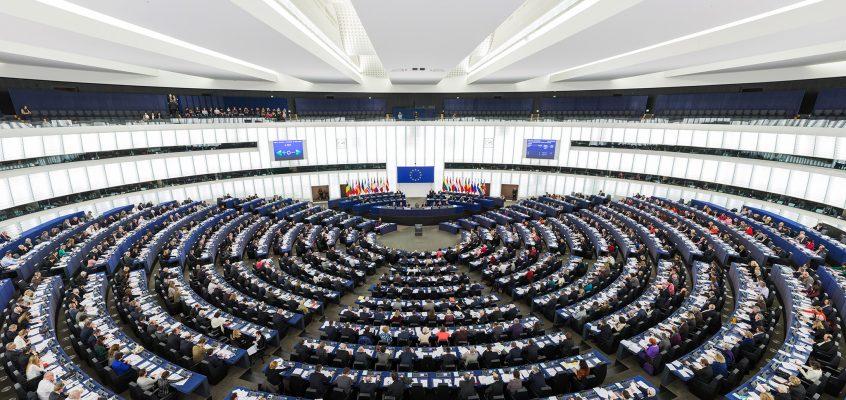 El Parlamento Europeo sale en defensa de la seguridad fitosanitaria del sector citrícola