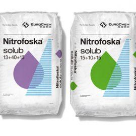 Nitrofoska® solub: El uso eficiente de los nutrientes