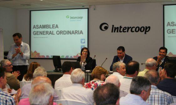 Intercoop Consultoría e Intercoop Comercial Agropecuaria celebran en Almassora sus Asambleas generales