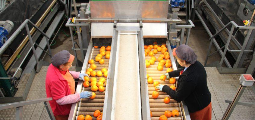 Coop. Agro-alimentarias de España apoya la regulación europea de la cadena y la lucha contra las prácticas desleales