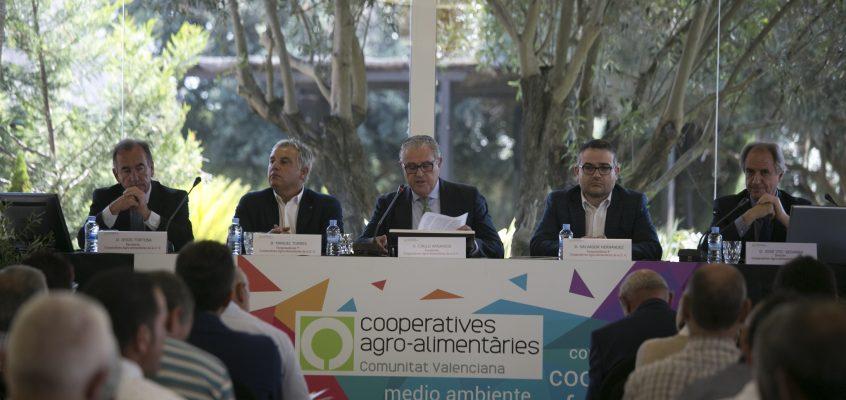 El valor de la producción comercializada de las cooperativas agroalimentarias valencianas superó en 2015 los 1.280M€