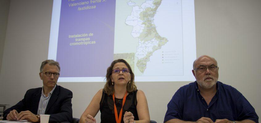 Detectada la presencia de Xylella fastidiosa en una parcela de almendros en Guadalest