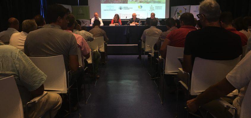 Más de 200 personas asisten a una jornada sobre Xylella fastidiosa en Alicante