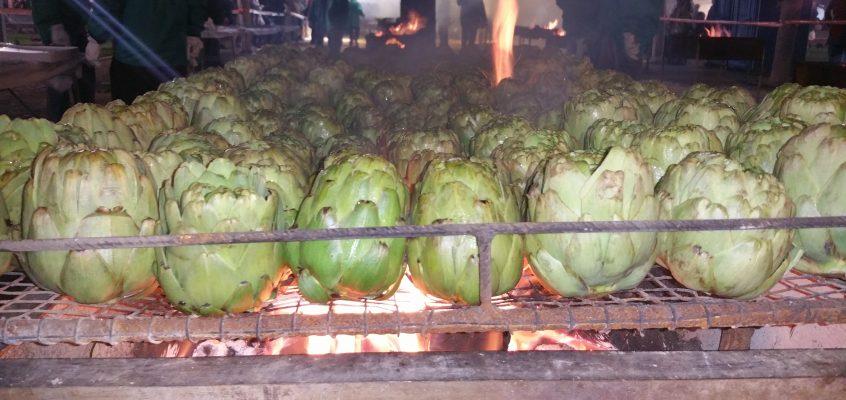 """El CRDOP Alcachofa de Benicarló prepara 2.500 kilos de producto para la """"torrada"""" del sábado"""