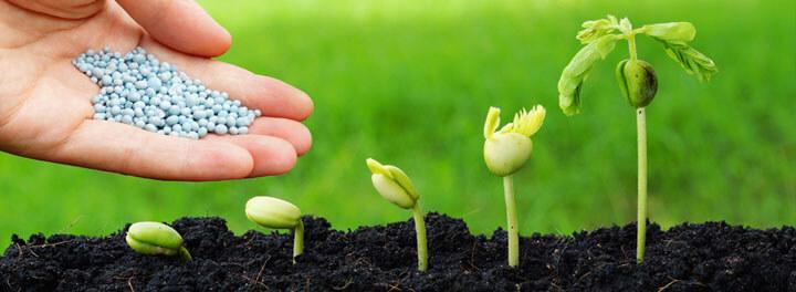 Las principales organizaciones agrícolas españolas piden fertilizantes de calidad a precios competitivos
